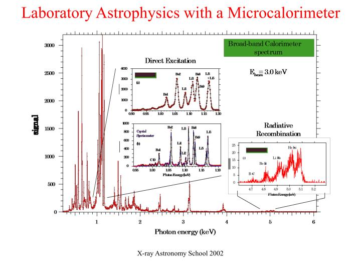 Laboratory Astrophysics with a Microcalorimeter