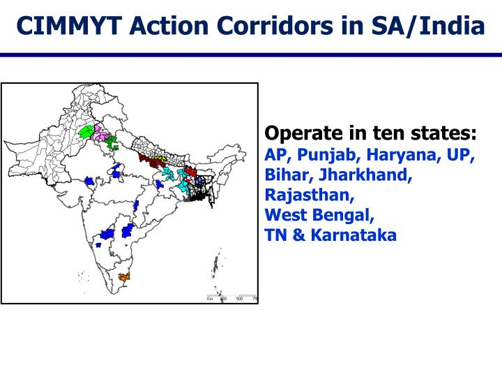 Cimmyt action corridors in sa india