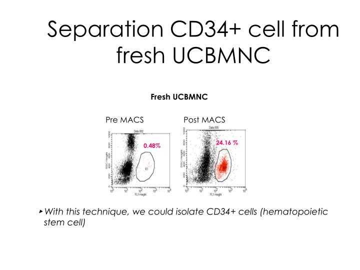 Separation CD34+ cell from fresh UCBMNC
