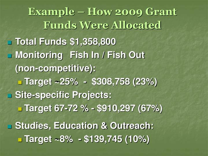 Example – How 2009 Grant Funds Were Allocated