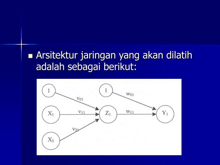 Arsitektur jaringan yang akan dilatih adalah sebagai berikut: