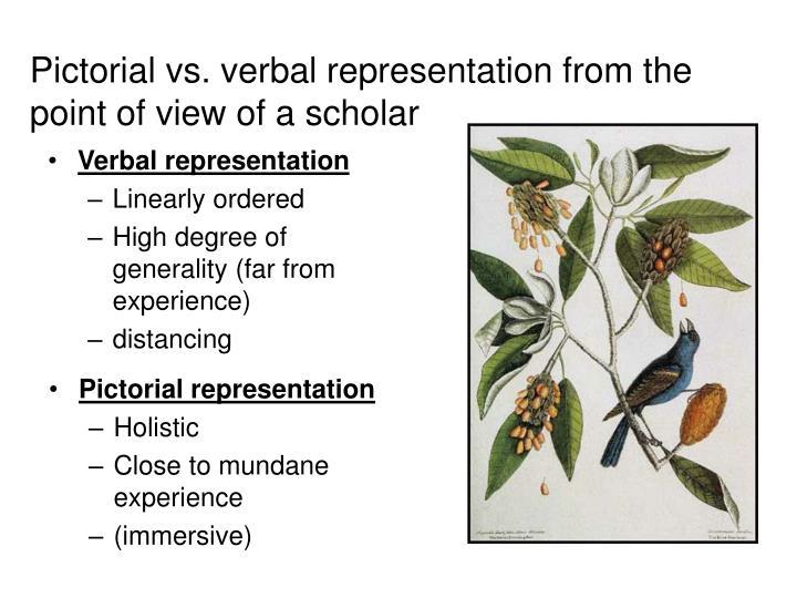 Verbal representation