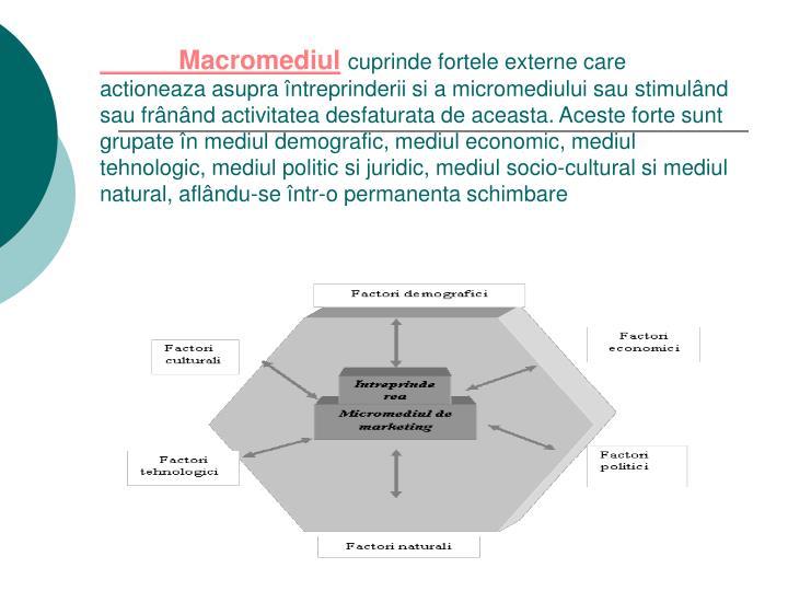 Macromediul