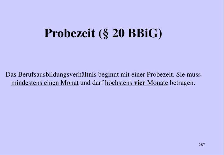 Probezeit (§ 20 BBiG)