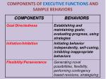 components of executive functions and sample behaviors