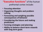 executive functions of the human prefrontal cortex include