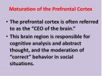 maturation of the prefrontal cortex
