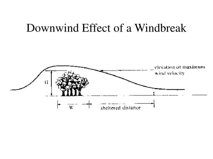 Downwind Effect of a Windbreak