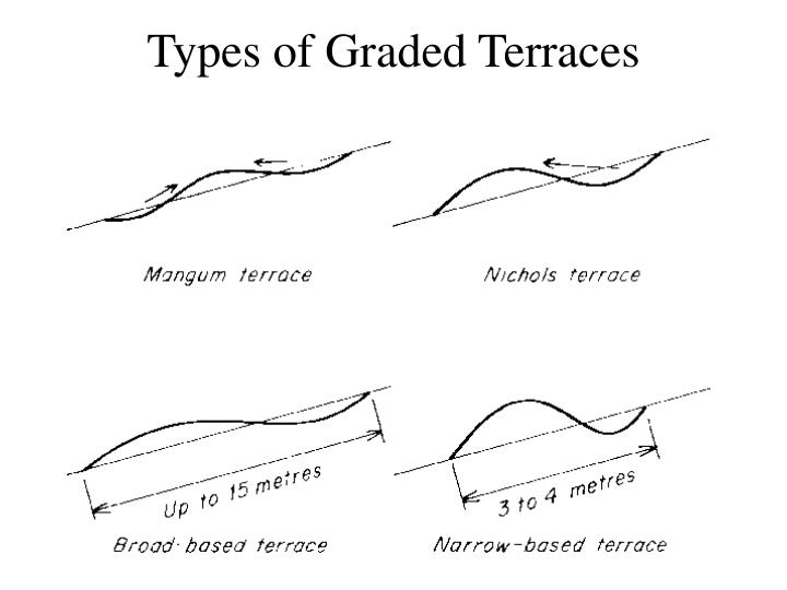 Types of Graded Terraces