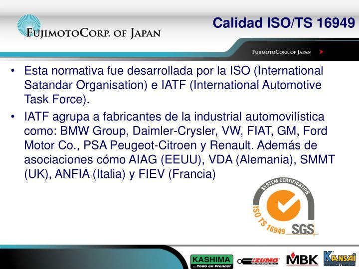 Calidad ISO/TS 16949