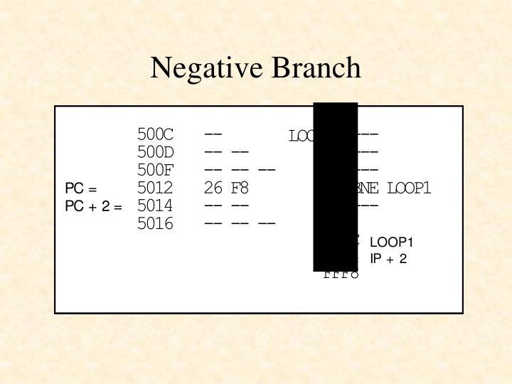 Negative Branch