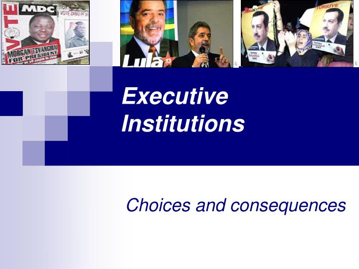 Executive institutions
