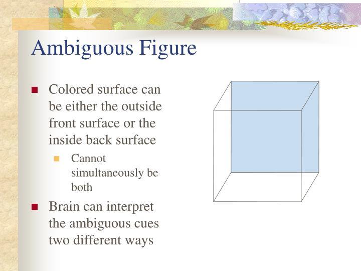 Ambiguous Figure