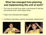 what has emerged from planning and implementing this unit of work