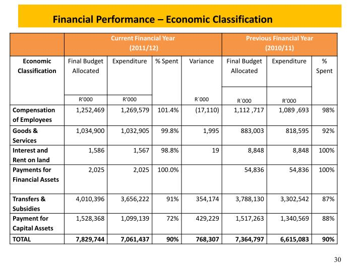 Financial Performance – Economic Classification