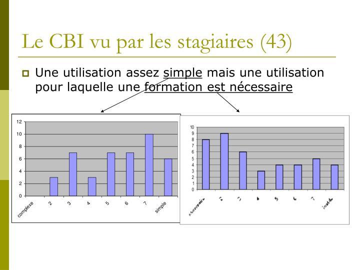 Le CBI vu par les stagiaires (43)