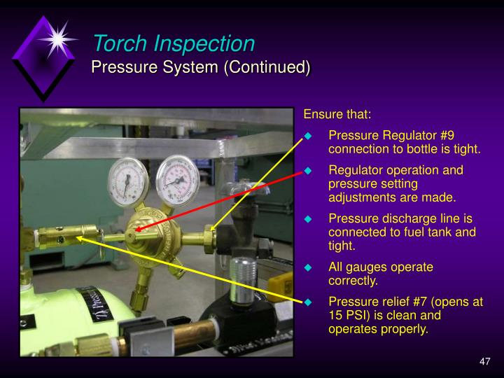 Torch Inspection