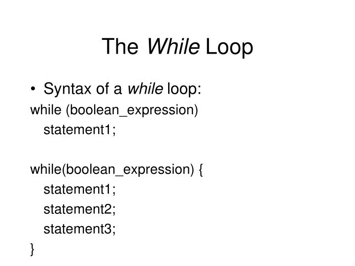 The while loop1