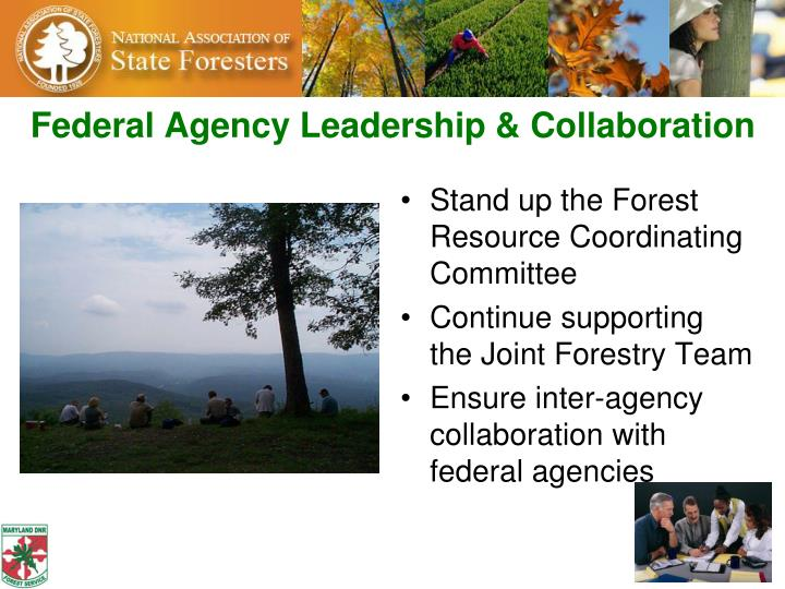 Federal Agency Leadership & Collaboration