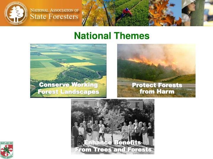 National Themes