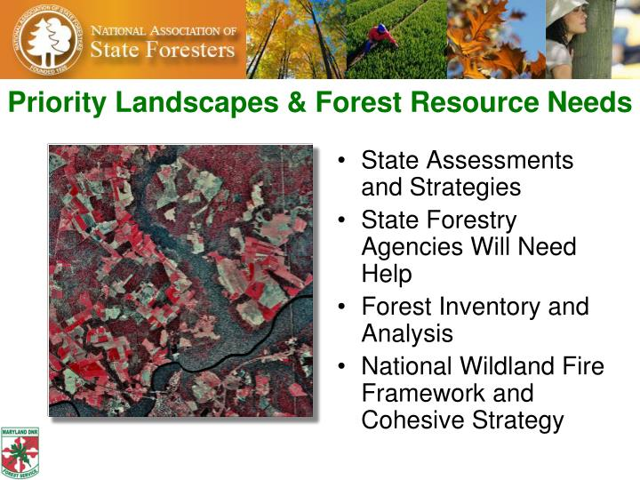 Priority Landscapes & Forest Resource Needs