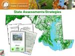 state assessments strategies