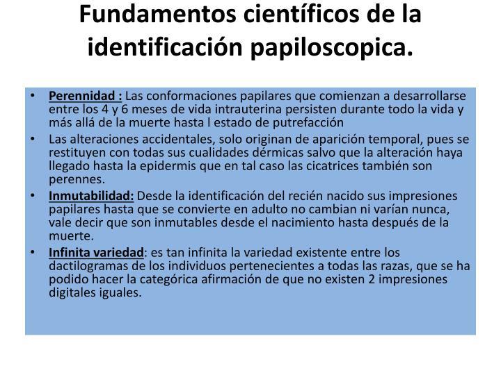 Fundamentos científicos de la identificación