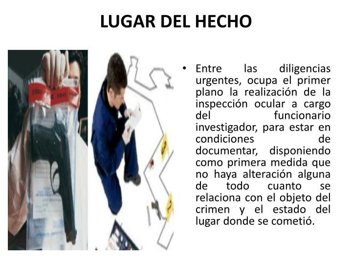 LUGAR DEL HECHO