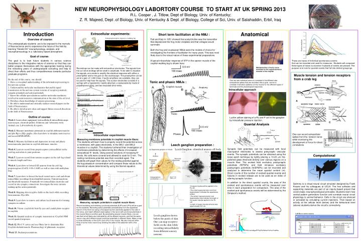 NEW NEUROPHYSIOLOGY LABORTORY COURSE  TO START AT UK SPRING 2013