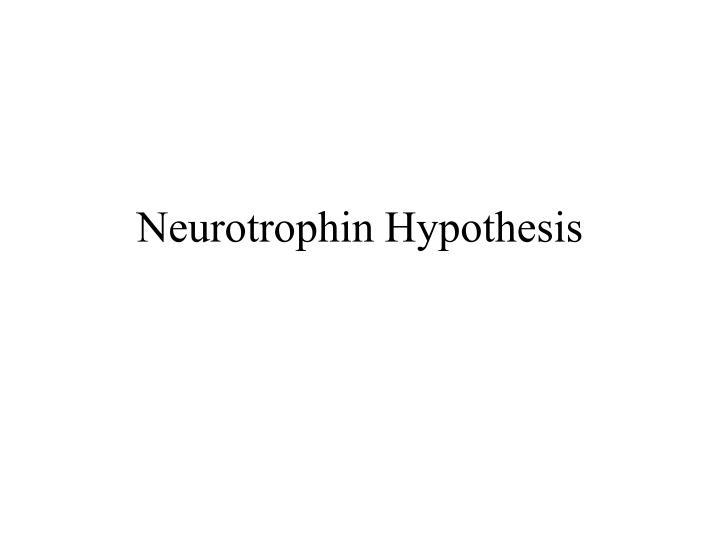 Neurotrophin Hypothesis