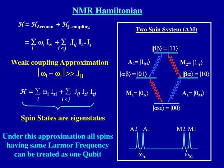 NMR Hamiltonian