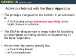 activators interact with the basal apparatus