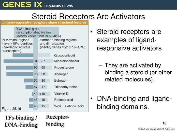 Steroid Receptors Are Activators
