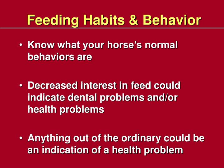 Feeding Habits & Behavior