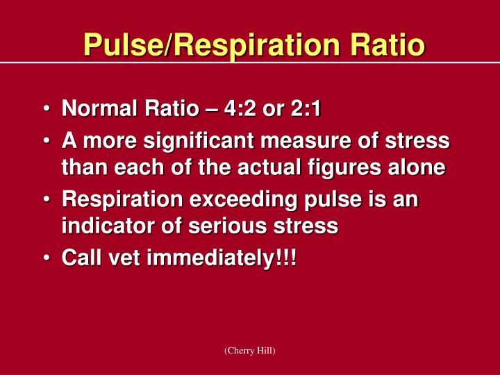 Pulse/Respiration Ratio