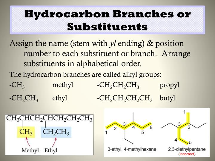 Hydrocarbon Branches or