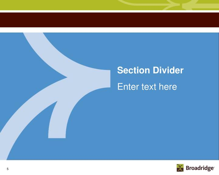 Section Divider