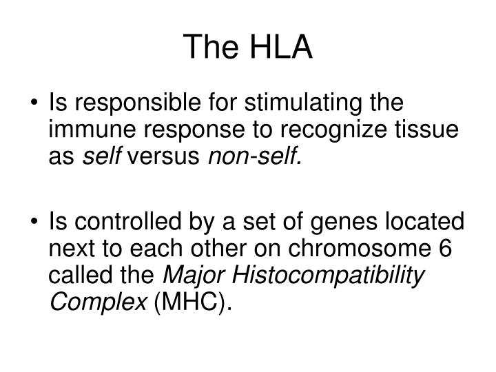 The HLA
