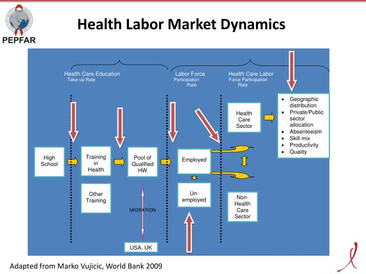 Health Labor Market Dynamics