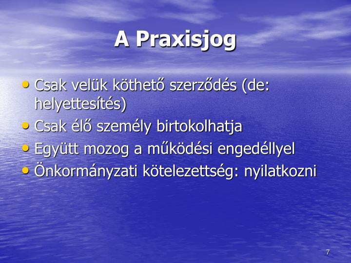 A Praxisjog