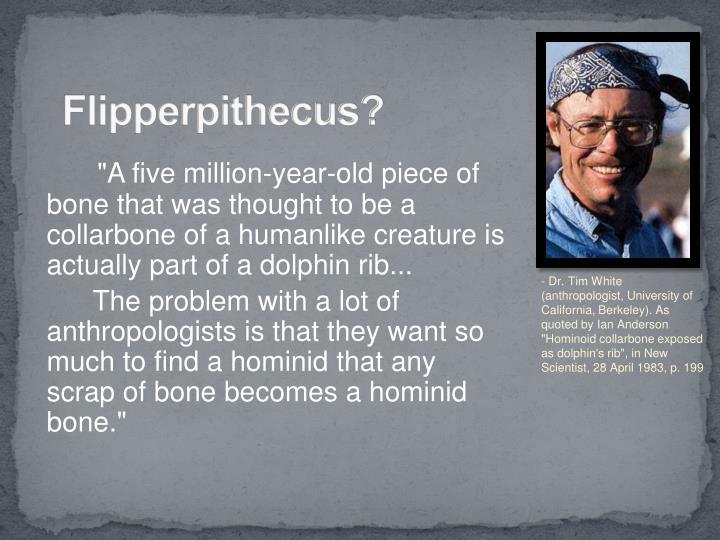 Flipperpithecus?