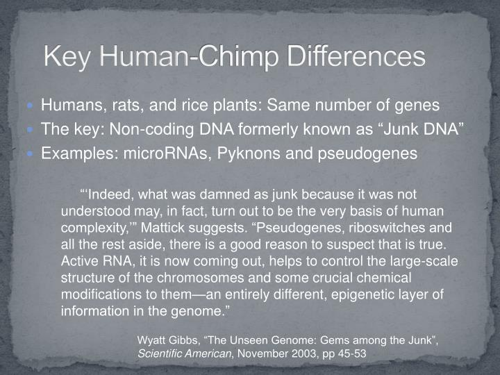 Key Human-Chimp Differences