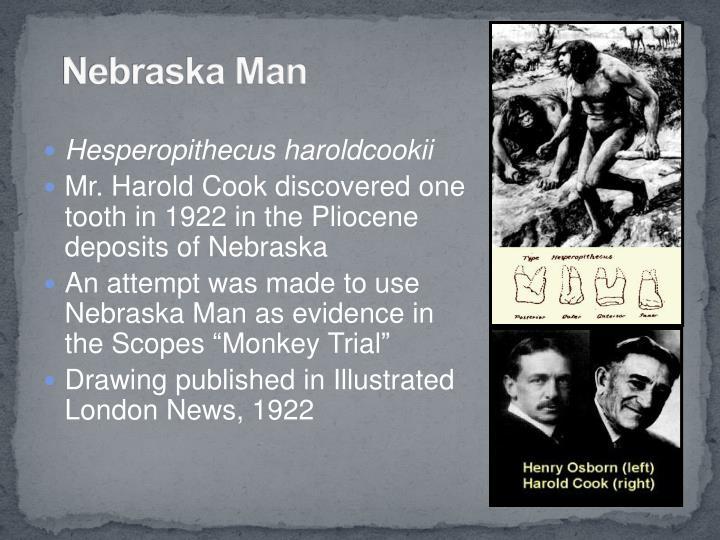 Nebraska Man