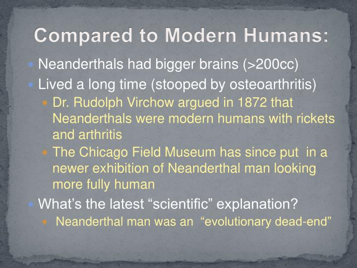 Compared to Modern Humans: