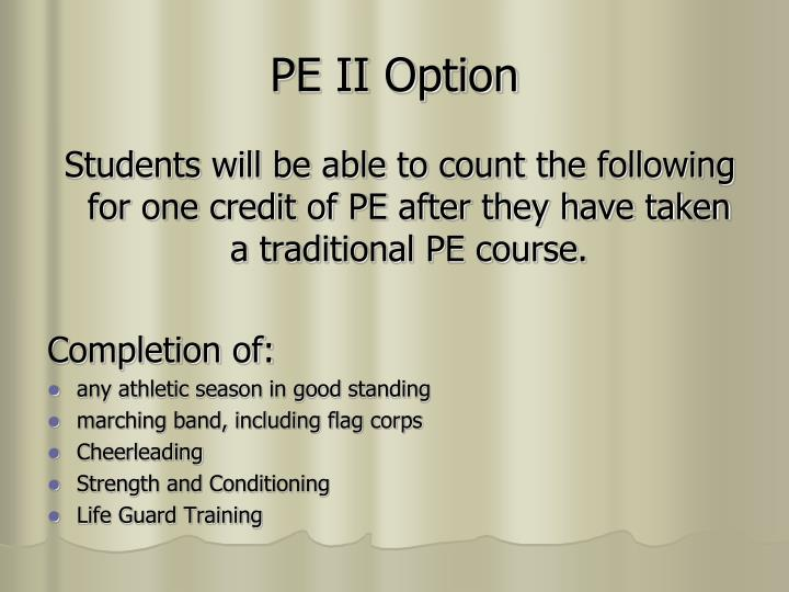 PE II Option