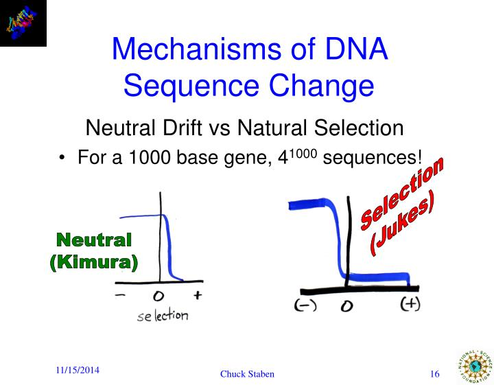 Mechanisms of DNA Sequence Change