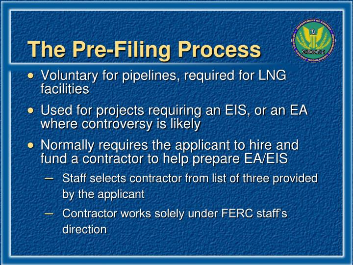 The Pre-Filing Process