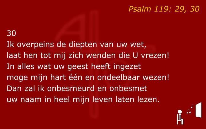 Psalm 119: 29, 30