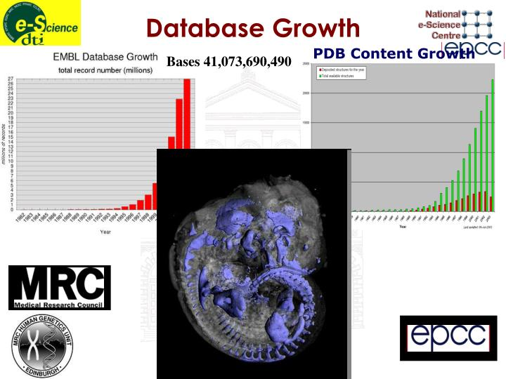 Database Growth