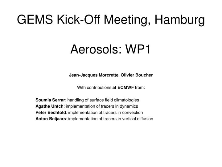 gems kick off meeting hamburg aerosols wp1